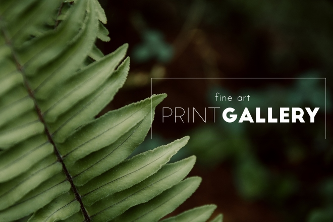 print gallery.jpg